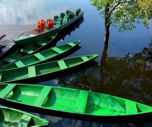 Hotel de Selva na Amazônia - canoas