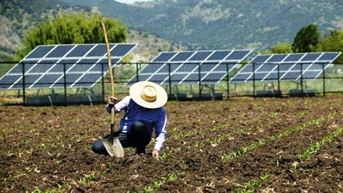 licenciamento-ambiental-para-energia-solar-no-parana-ponto-solar